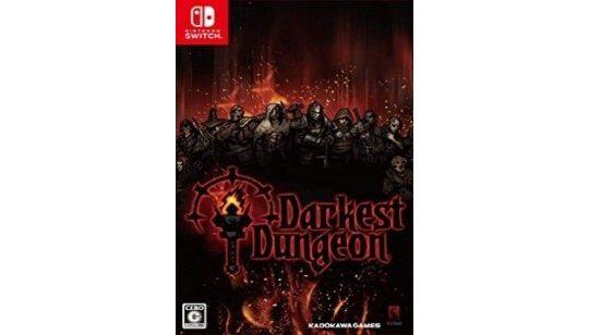 Darkest Dungeon Switch cover